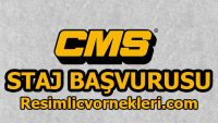 CMS Staj Başvurusu