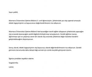staj-on-yazi-ornegi-1