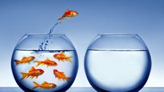 10 Basit Adımla Grup Mülakatlarını Başarıyla Geçebilirsiniz!