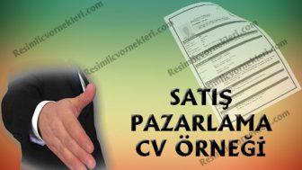 Satış Pazarlama CV Örnekleri