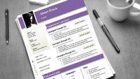 CV Örnegi Nasıl Hazırlanır 2016