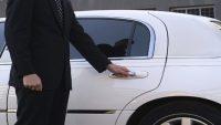 Makam Şoförü Cv Örnegi