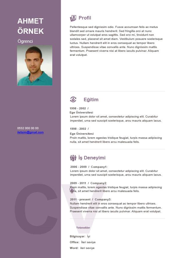 CV_design_08